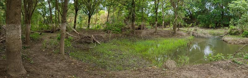 2019-05-18 Westside flood and ecology