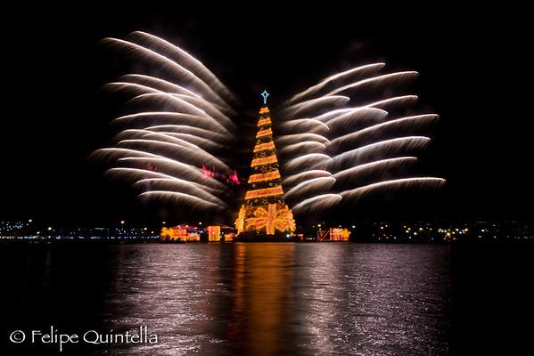 Inauguração da Árvore de Natal da Lagoa 2011
