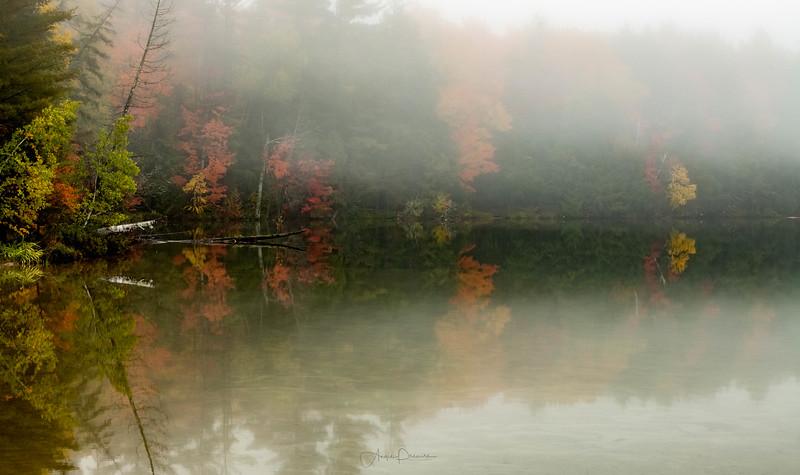 Foggy Morning at Pete's Lake