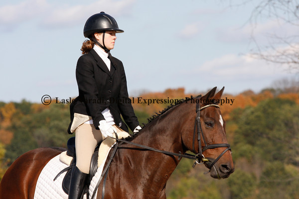 Dressage - PM, Ring 1