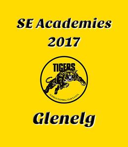 SE Academies  -  2017