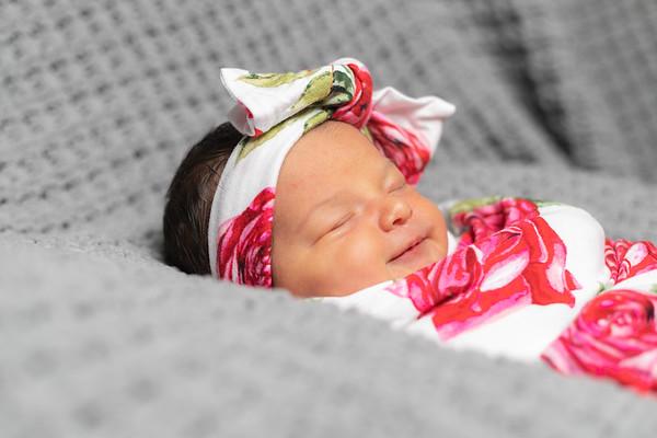 Blair Newborn Session