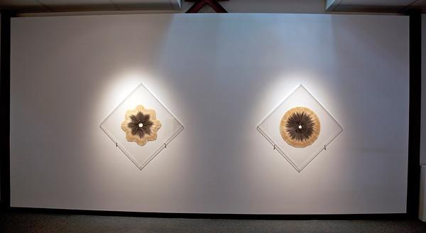 2010 Stuart Frost & Saara Ekstrom 2010