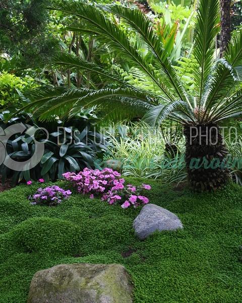 Jungle Garden_batch_batch.jpg