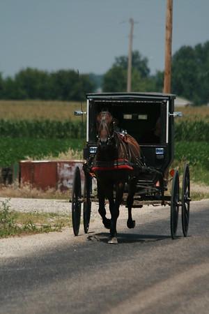 Amish People & Transportation