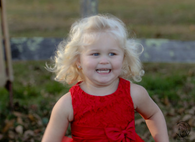 Christmas Mini Sessions WV 2 - Downloadable