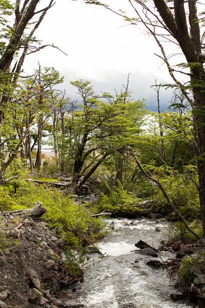 patagonia-1072.jpg