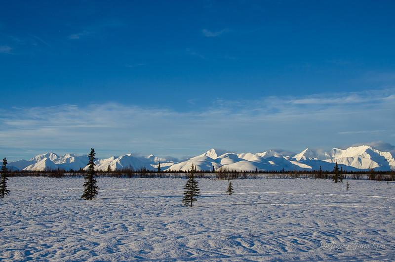 USA-alaska-Alaska Railroad-2221.jpg