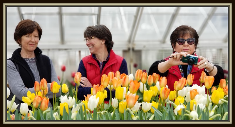 2018-03-10 Caper Elizabeth Park Rose Garden V(20) Martha Sandy Mom Kathy