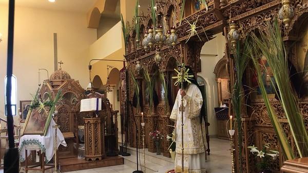 04.21.19 Palm Sunday, sermon by Metropolitan Demetrius (english)