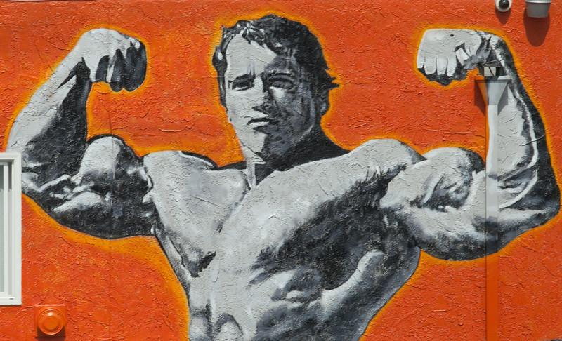 Arnold Schwarzenegger in Venice, Ca