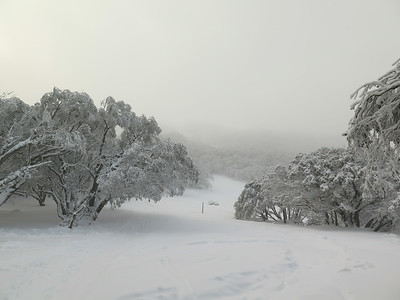 Skiing 2014
