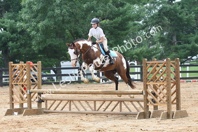 2016 Horse Aid Live Dressage and CT