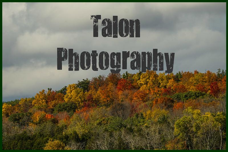 Autumn Hill with Text.jpg