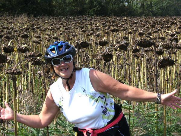 Judy in front of sunflower field