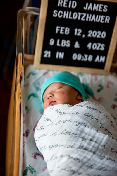 Reid's Birth