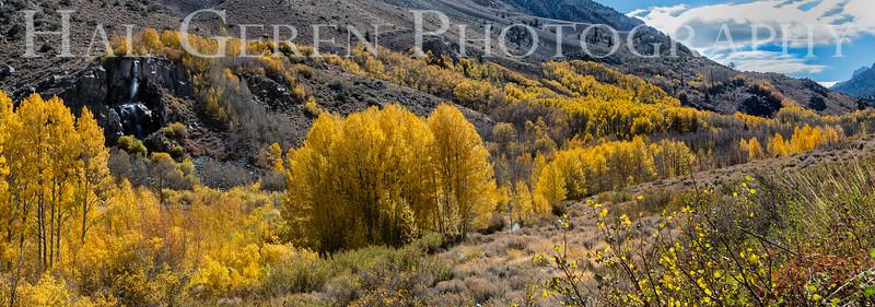 South Fork of Bishop Canyon Bishop, California 1610S-W2LR
