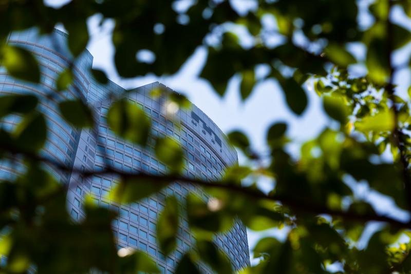 Mori Tower through the trees