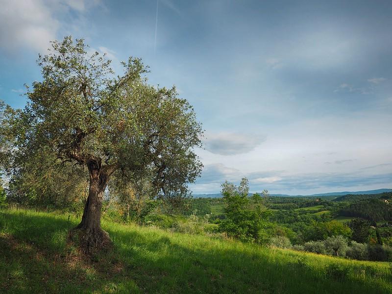 San Gimignano e.o. 30-04-18 (161b).jpg