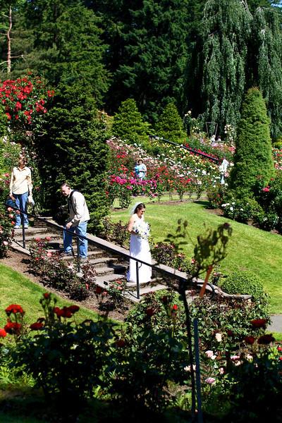 Portland International Rose Test Garden  2241.jpg