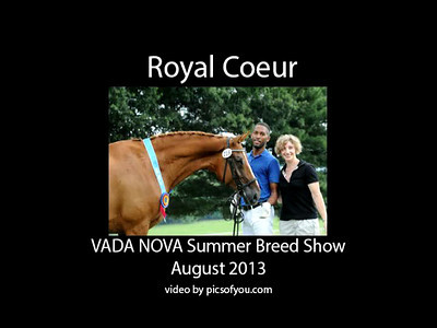 VADA NOVA Summer Breed Show 2013