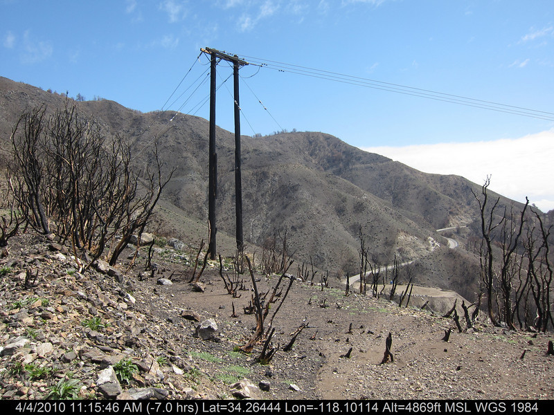 20100404053-Angeles National Forest, Strawberry Peak trail.JPG
