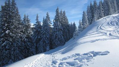 2015.01 Schneeschuhwanderung Stierkopf