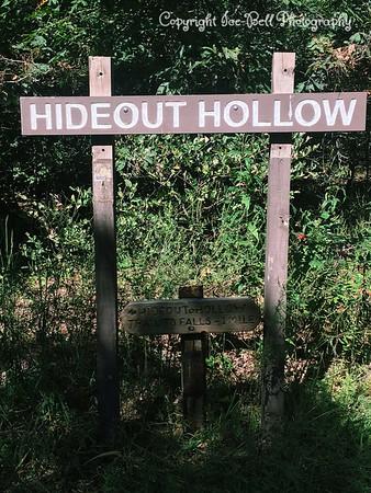Hideout Hollow