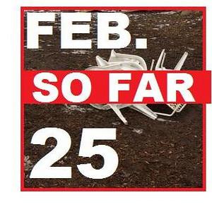 25 FEBRUARY (so far)