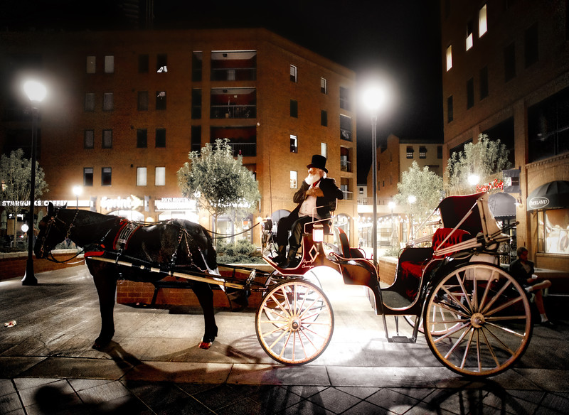 Grabbing A Horse & Carriage In Denver