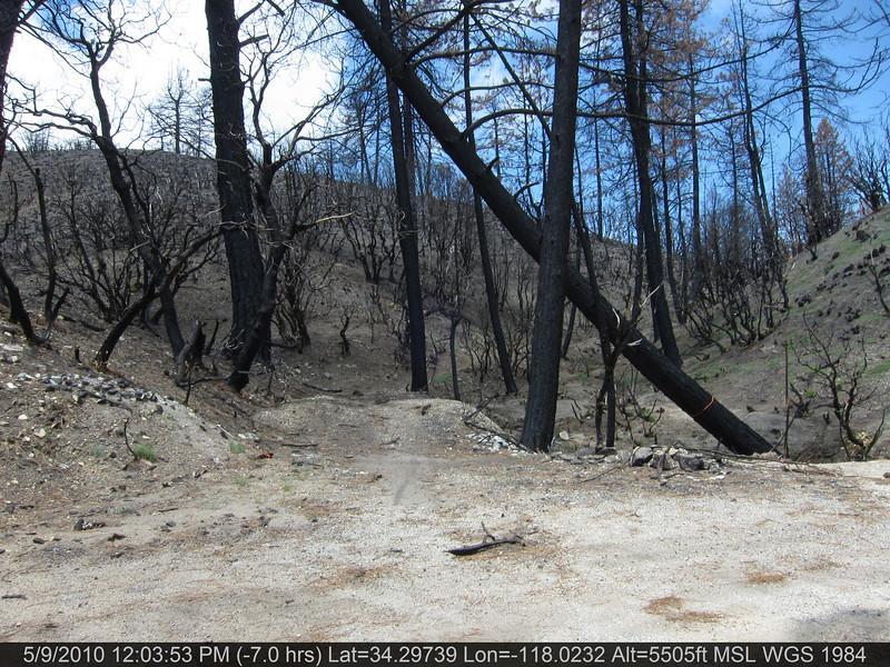 083-Vetter mtn Trail.JPG