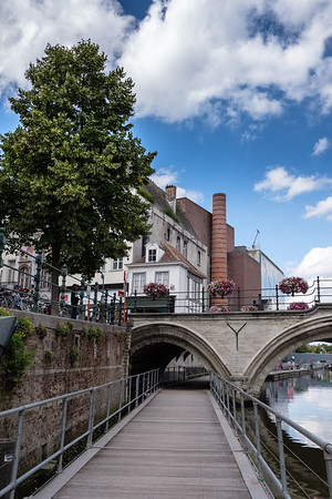 """2017 Mechelen """"Provia""""."""