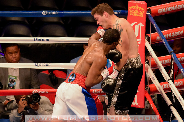 Marcus Browne vs Kevin Engel Dec. 2013