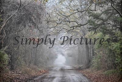fog 0372 copy