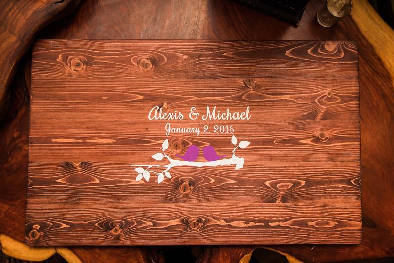 Alexis & Mike's Wedding-6978.jpg