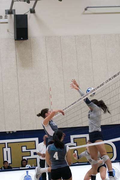 HPU Volleyball-91814.jpg