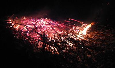 Bon Fires