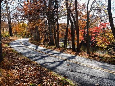 Woodlawn Autumn 20151030
