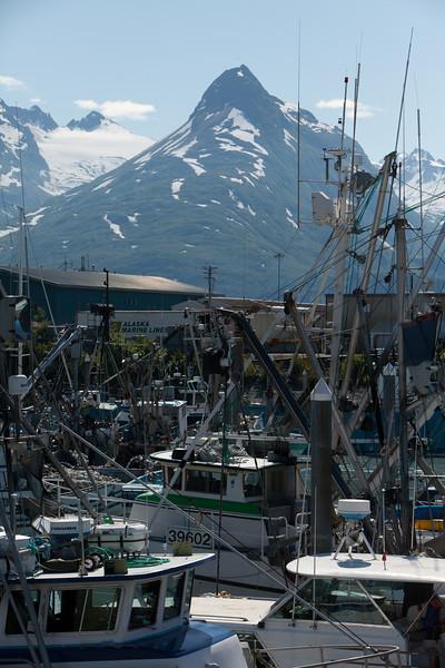 Alaska Copper River-0599.jpg