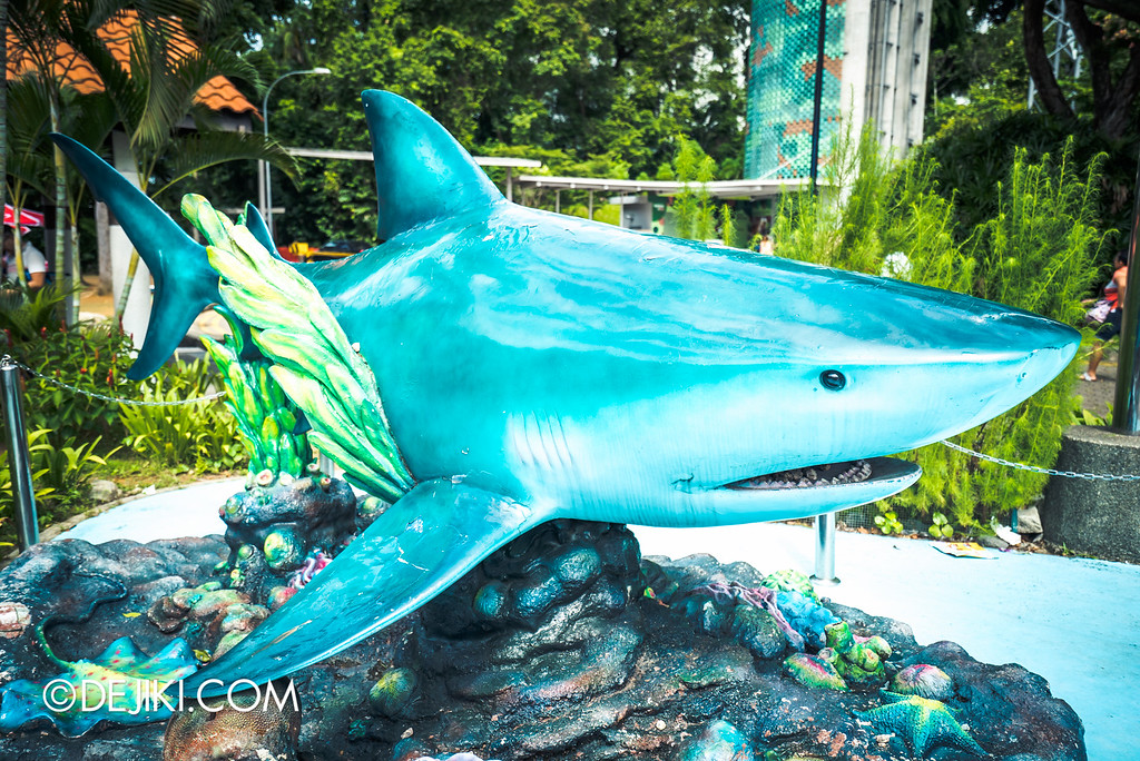 Underwater World Singapore - shark photo spot