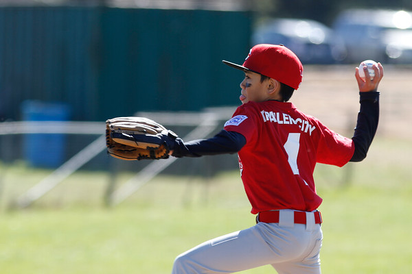 2013 Minor Reds