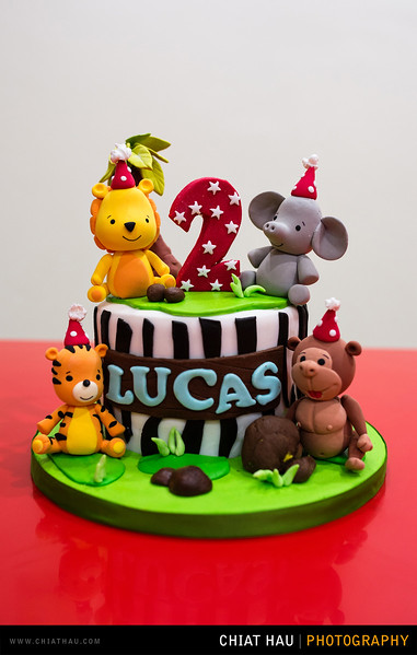 Lucas_2_Years_Old_Celebration-8.jpg