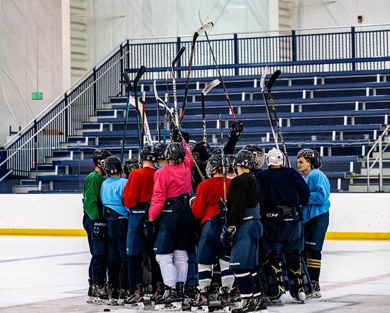 NAVY Men's Ice Hockey Spring 2021