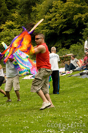 Flagging in the Park June 2011