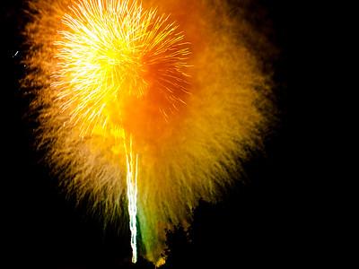 Fenton Fireworks 2013