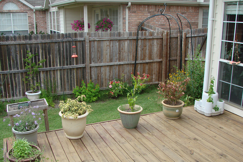 West fence and gate from deck (6/15/07)