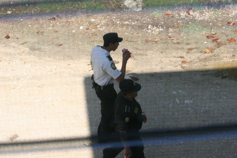 After señor piggy, the el Policia were taking a stroll down the street...