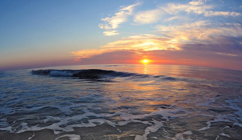 SCOPe_Huntington Beach State Park OCT 2012_11.jpg