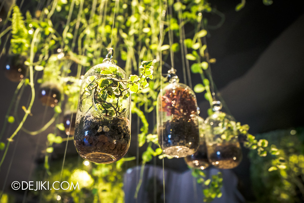 Singapore Garden Festival 2016 - World of Terrariums 5 hanging