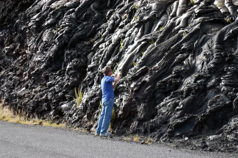 262- 20080412- Hawaii 15- Volcano Nat'l Park DSC_3131.jpg